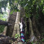Connecting with the spirit of trees ayahuasca