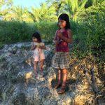 Volunteer Opportunities in the Jungle