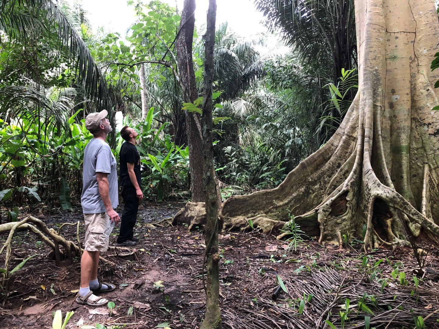 Hiking at Pisatahua is one of the jungle activities we offer.