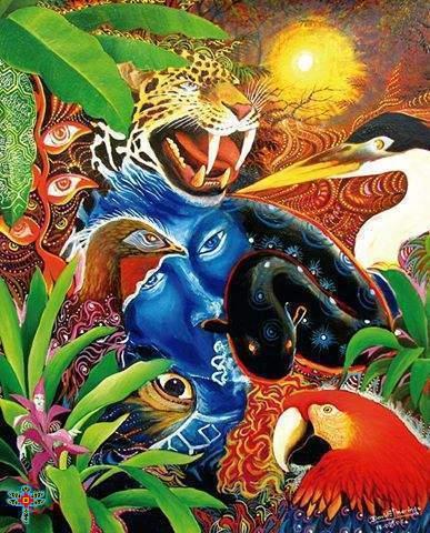 Ayahuasca & Visionary Artist: David Esquibel (Amazon Residencies)